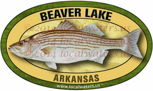 Beaver Lake Striped Bass Sticker
