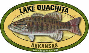 Lake_Ouachita_Sticker_Smallmouth_Bass300_pix