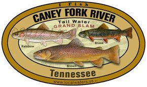 Caney Fork River Tennessee Grand Slam Rainbow, Brown and Brook Trout Localwaters 5x3 Decal Sticker