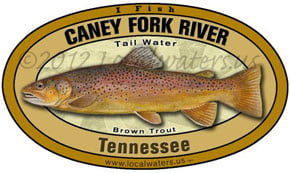 Caney Fork River Tennessee Brown Trout Localwaters 5x3 Decal Sticker
