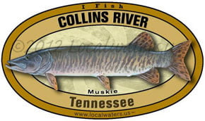 Collins River Tennessee Musky Localwaters 5x3 Decal Sticker