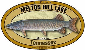 Melton Hill Lake muskie Muskellunge Fishing
