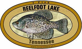Reelfoot Lake Crappie