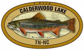 Calderwood Lake Tennessee BrookTrout Sticker decal 5x3