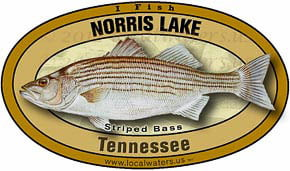 Norris Lake Tennessee TN Striped Bass Sticker Decal 5x3