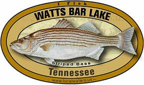 Watts Bar Lake Tennessee TN Striped Bass Sticker Decal