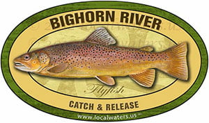 Bighorn River Flyfish Fishing decal Catch and Release