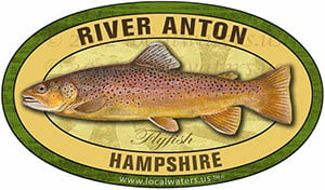 River Anton brown trout Flyfishing