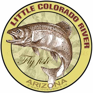 Little Colorado River Arizona Fly Fish