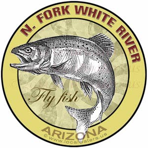 North Fork White River Arizona Fly Fish