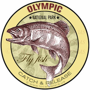 Olympic National Park Fly Fishing sticker