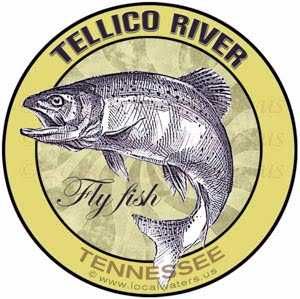 Tellico River Sticker Fly Fish Tennessee