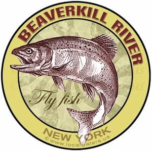 Beaverkill River New York