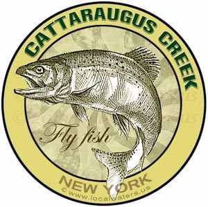 Cattaraugus Creek Fly Fish New York