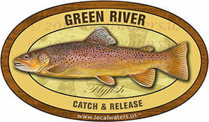Green River Fly Fishing Sticker Brown Trout