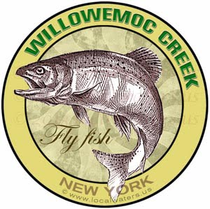 Willowemoc Creek Fly Fish New York
