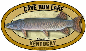Cave Run Lake Muskie Kentucky