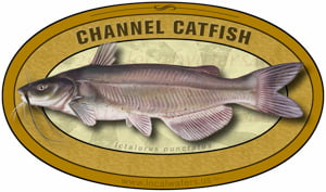 Channel Catfish sticker custom design