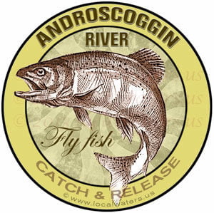 Androscoggin River Fly fish C&R