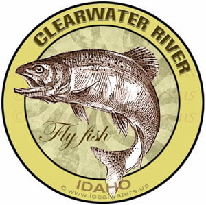 clearwater river fly fish salmon