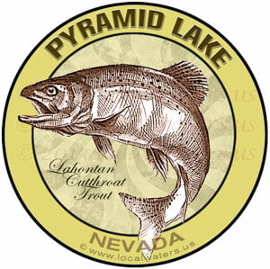 Pyramid Lake Nevada Lahontan cutthroat trout