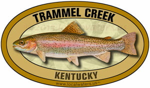 Trammel Creek rainbow trout