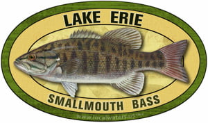 Lake Erie smallmouth bass
