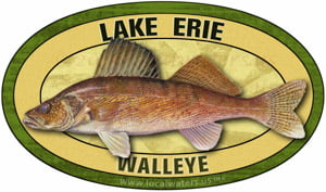 Lake Erie Walleye fishing