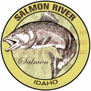 Salmon River Idaho Salmon Fishing
