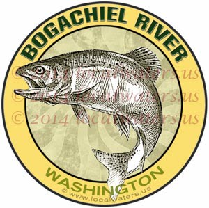 Bogachiel River Olympic Peninsula Washington