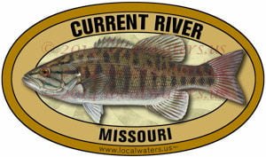 Current River Missouri Smallmouth Bass Fishing
