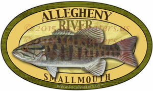Allegheny River Smallmouth