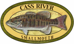 Cass River Smallmouth Bass