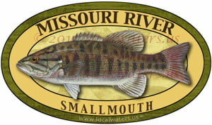 Missouri River Smallmouth Bass