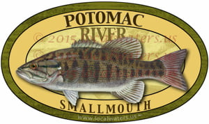 Potomac River Smallmouth Bass Fishing Sticker Decal