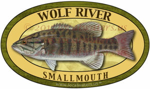 Wolf River Smallmouth Bass