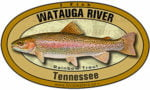 tn_watauga_river_rainbow_trout_300opt