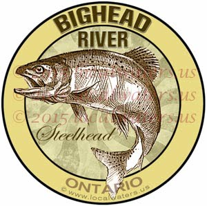 Bighead River Sticker Steelhead Fishing Decal Ontario Trout Big Head Logo Fly Fishing