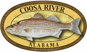 Coosa River Sticker Striped Bass Fishing Decal Alabama