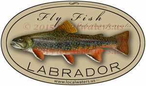 Labrador Fly Fishing Sticker Brook Trout Decal