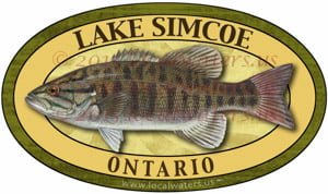 Lake Simcoe Sticker Smallmouth Bass Fishing Decal Ontario