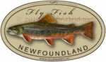 Newfoundland Fly Fishing Sticker Brook Trout Decal