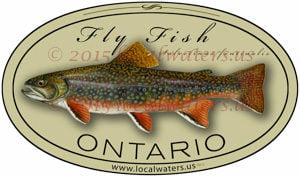 Ontario Fly Fishing Sticker Brook Trout Decal