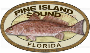 Pine Island Sound Redfish Fishing Sticker Florida Decal