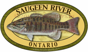 Saugeen River Decal Smallmouth Bass Sticker Fishing Ontario Canada