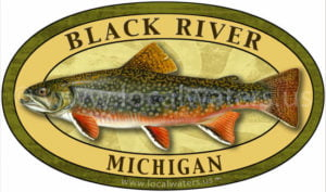 Black River Sticker Brook Trout Fishing Michigan Decal Logo