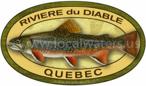 Riviere du Diable Brook trout sticker Quebec fishing decal omble de fontaine
