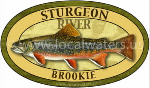 Sturgeon River Brook Trout sticker fishing decal