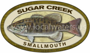 Sugar Creek Smallmouth Bass