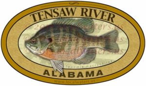 Tensaw River Bluegill Sticker Alabama Fishing Decal
